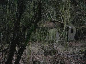 creepy_shack_1_by_raggedclaw-d3h3rkq