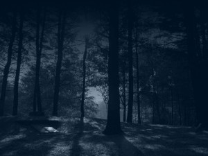 the_forest_by_chrome__twilight